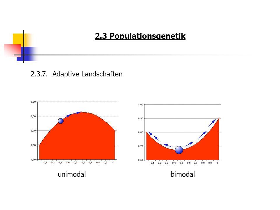 2.3 Populationsgenetik 2.3.7.Adaptive Landschaften unimodalbimodal