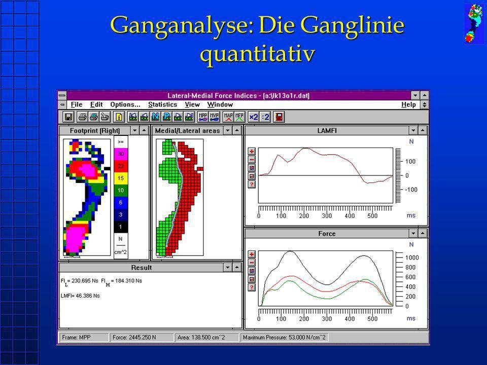 Ganganalyse: Die Ganglinie quantitativ