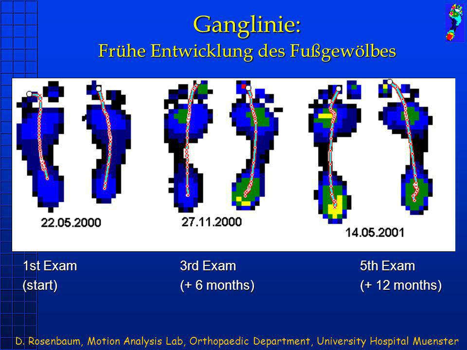 Ganglinie: Frühe Entwicklung des Fußgewölbes 1st Exam 3rd Exam 5th Exam (start)(+ 6 months)(+ 12 months) D. Rosenbaum, Motion Analysis Lab, Orthopaedi