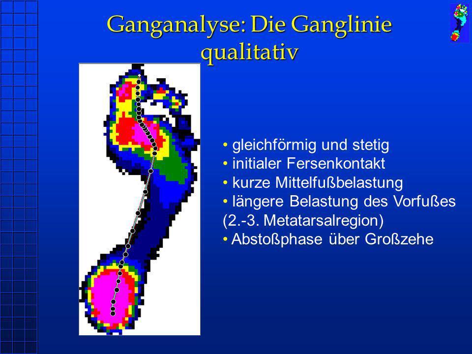 Ganganalyse: Die Ganglinie qualitativ gleichförmig und stetig initialer Fersenkontakt kurze Mittelfußbelastung längere Belastung des Vorfußes (2.-3. M