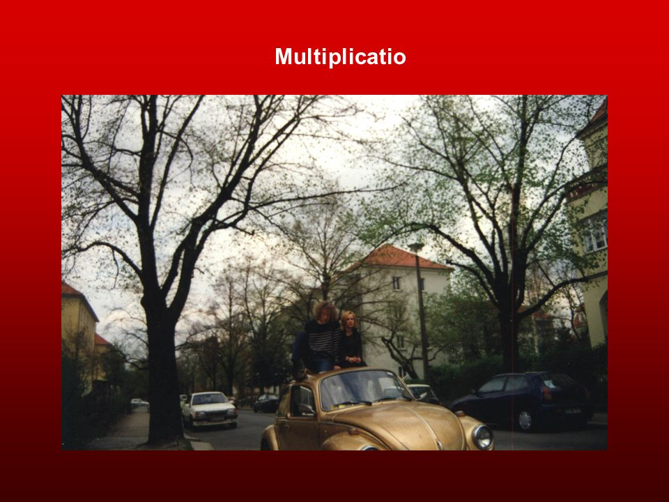 Multiplicatio