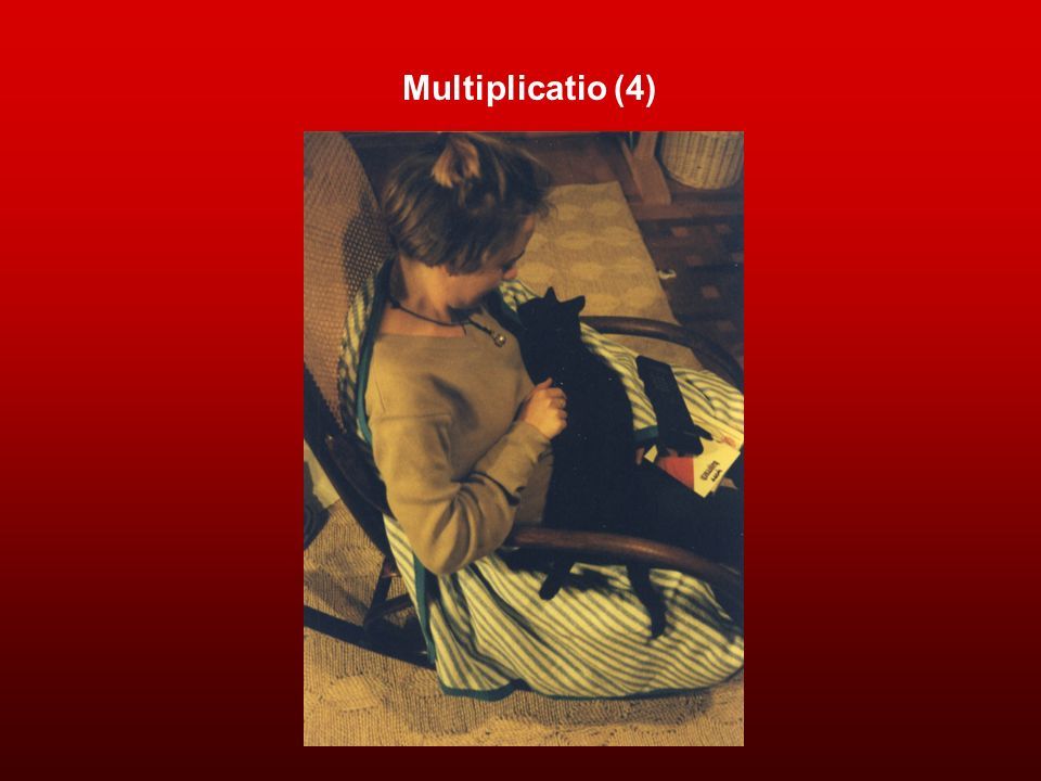 Multiplicatio (4)