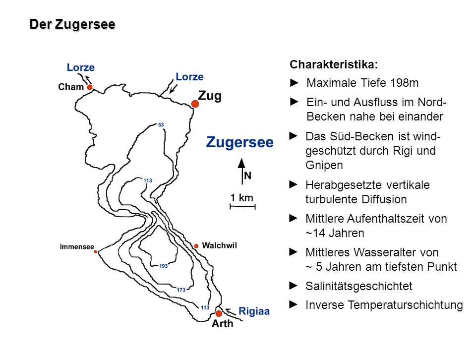 Charakteristika: Der Zugersee Maximale Tiefe 198m Ein- und Ausfluss im Nord- Becken nahe bei einander Das Süd-Becken ist wind- geschützt durch Rigi un