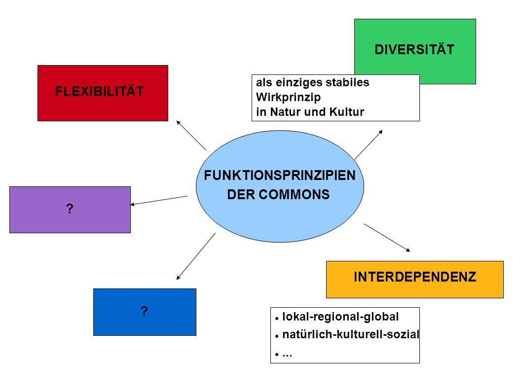 FUNKTIONSPRINZIPIEN DER COMMONS DIVERSITÄT ? FLEXIBILITÄT INTERDEPENDENZ als einziges stabiles Wirkprinzip in Natur und Kultur lokal-regional-global n
