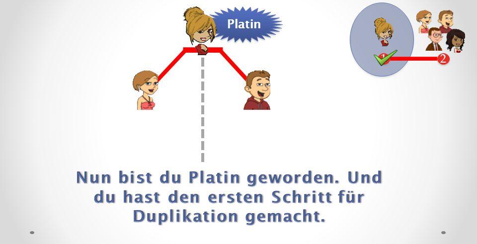 2 2 1 1 Platin