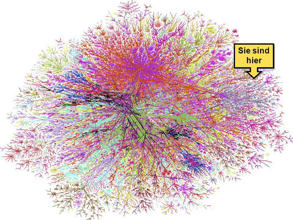 2004-03-31Internet und Webseiten-Gestaltung - T. Mättig7 Landkarte vom Internet Sie sind hier