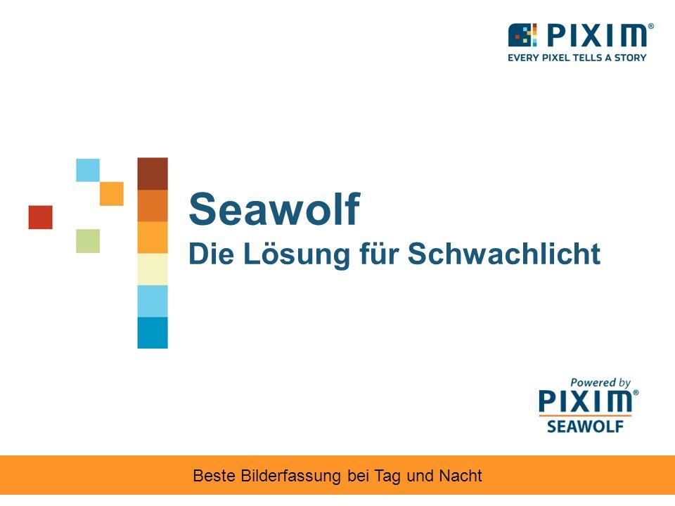 Seawolf Die Lösung für Schwachlicht Beste Bilderfassung bei Tag und Nacht