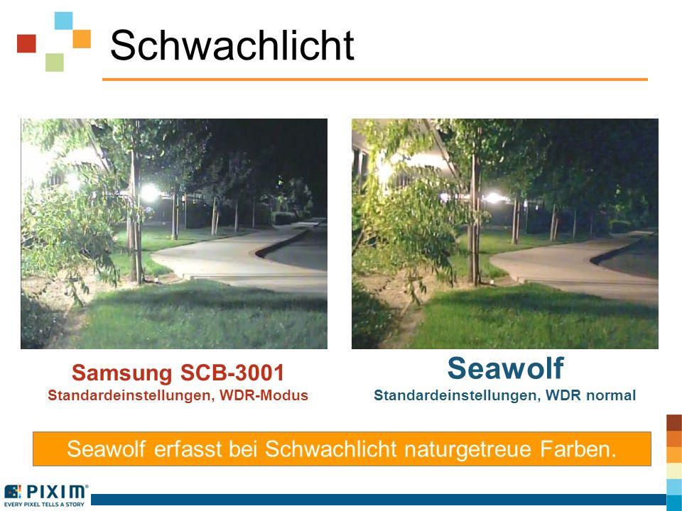 Schwachlicht Samsung SCB-3001 Standardeinstellungen, WDR-Modus Seawolf Standardeinstellungen, WDR normal Seawolf erfasst bei Schwachlicht naturgetreue
