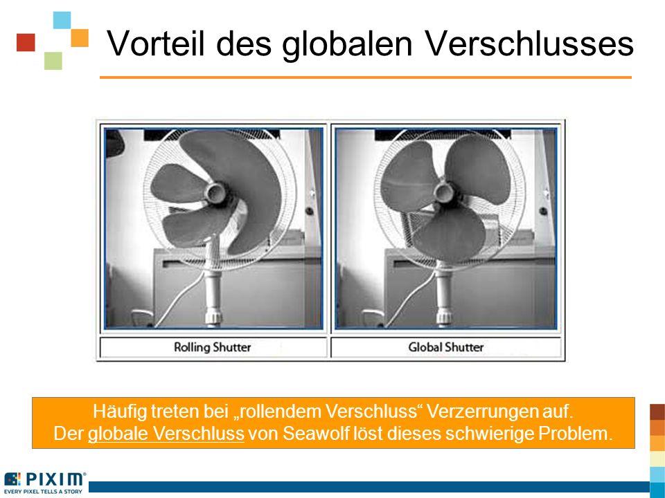 Vorteil des globalen Verschlusses Häufig treten bei rollendem Verschluss Verzerrungen auf. Der globale Verschluss von Seawolf löst dieses schwierige P
