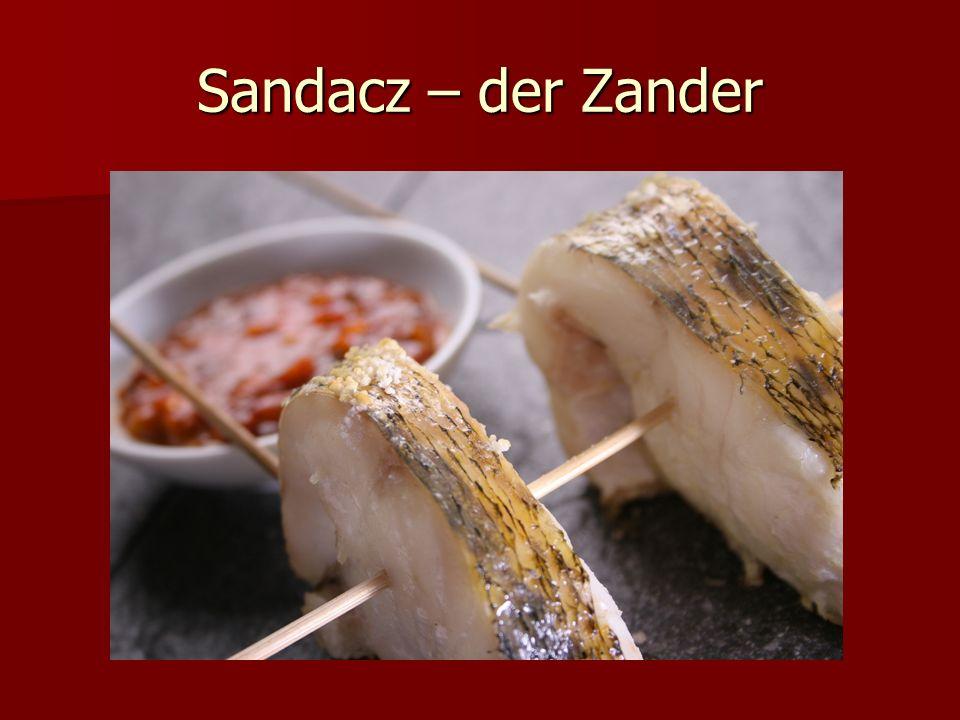 Sandacz – der Zander