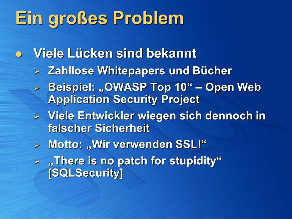 Ein großes Problem Viele Lücken sind bekannt Viele Lücken sind bekannt Zahllose Whitepapers und Bücher Zahllose Whitepapers und Bücher Beispiel: OWASP