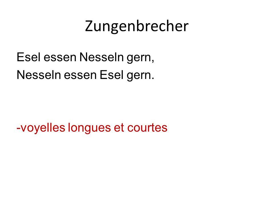 Zungenbrecher Esel essen Nesseln gern, Nesseln essen Esel gern. -voyelles longues et courtes