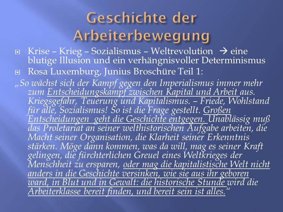 Krise – Krieg – Sozialismus – Weltrevolution eine blutige Illusion und ein verhängnisvoller Determinismus Rosa Luxemburg, Junius Broschüre Teil 1: So
