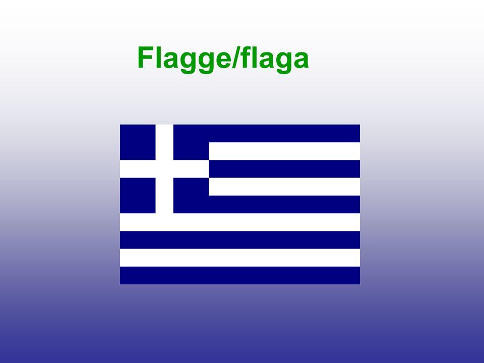 Flagge/flaga