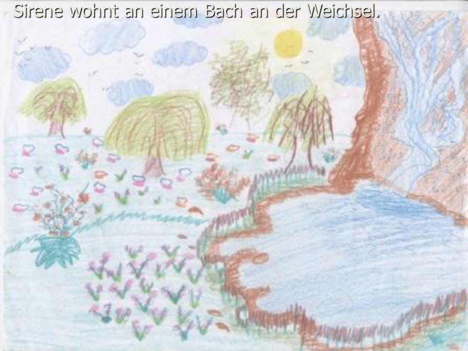 Sirene wohnt an einem Bach an der Weichsel.
