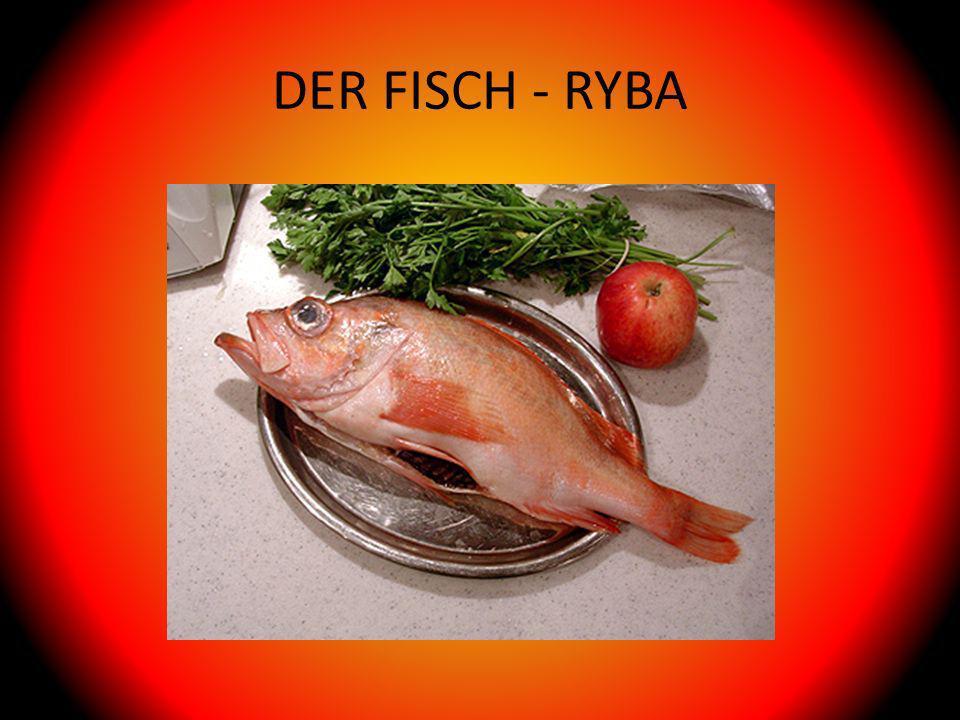 DER FISCH - RYBA