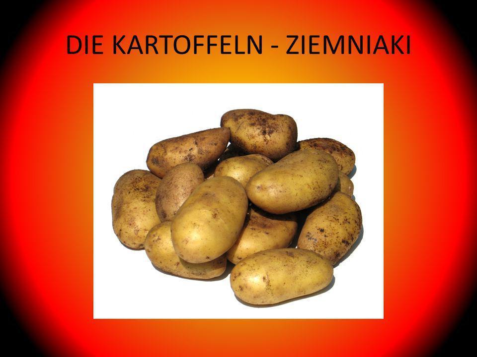 DIE KARTOFFELN - ZIEMNIAKI