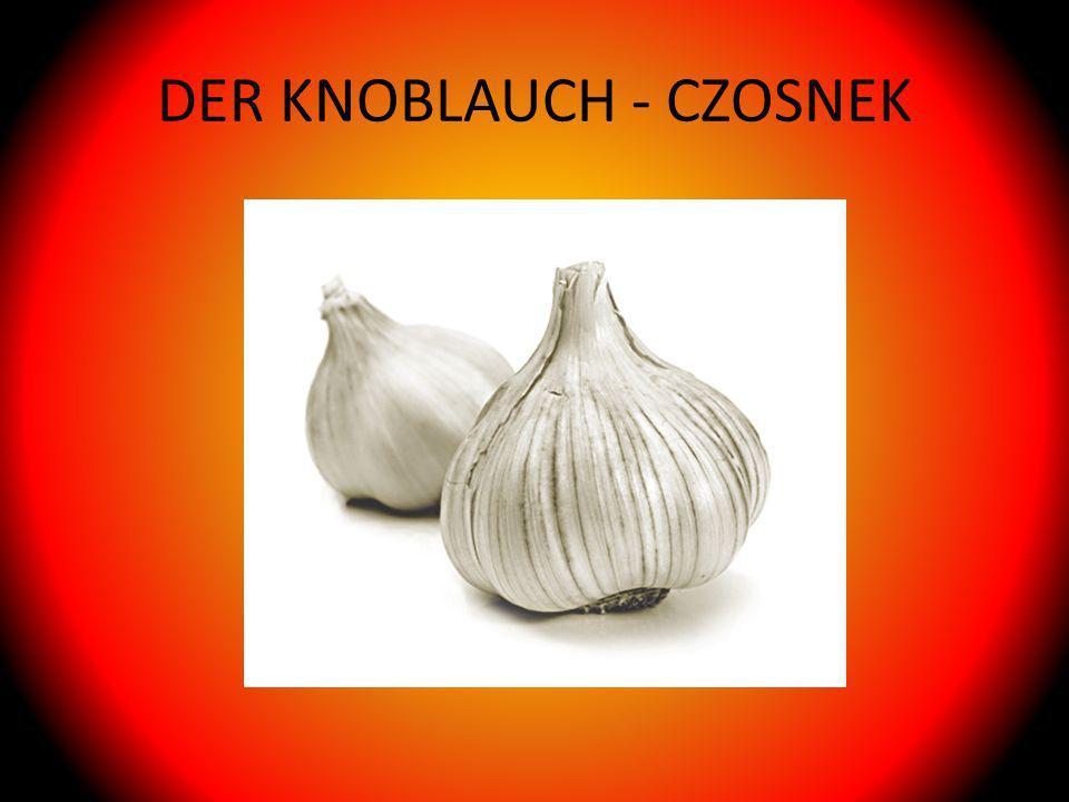 DER KNOBLAUCH - CZOSNEK
