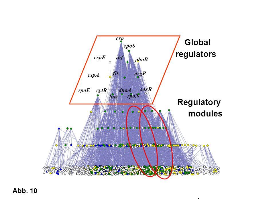 . rpoE fis soxR cspA rpoS phoB crp ihf argP cspE rpoN dnaA hns cytR Global regulators Regulatory modules Abb. 10