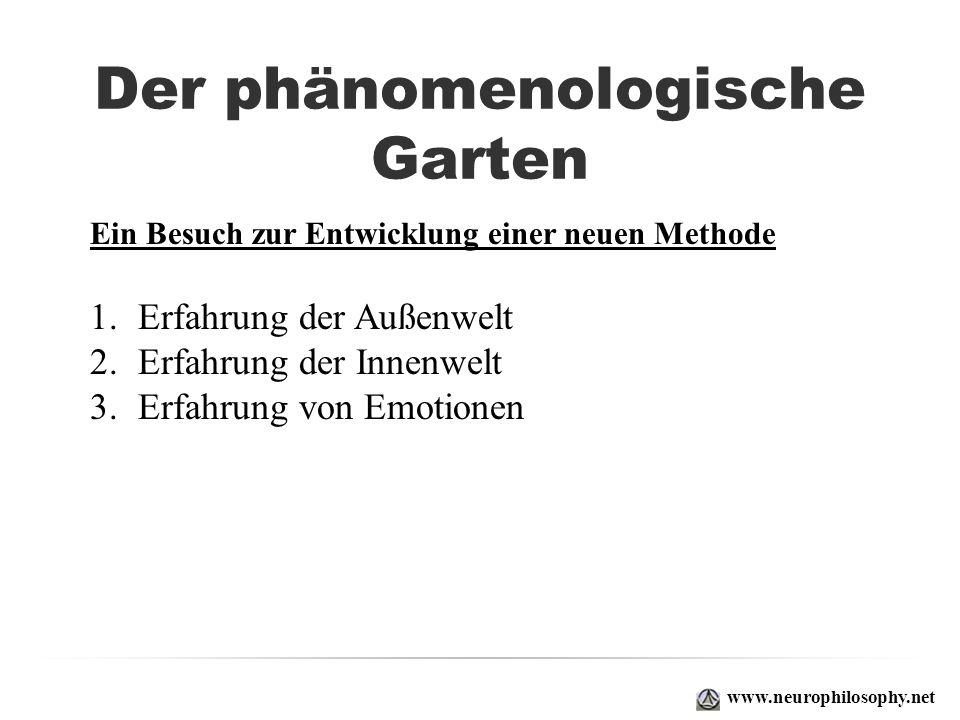 Der phänomenologische Garten 1.Erfahrung der Außenwelt 2.Erfahrung der Innenwelt 3.Erfahrung von Emotionen www.neurophilosophy.net Ein Besuch zur Entw