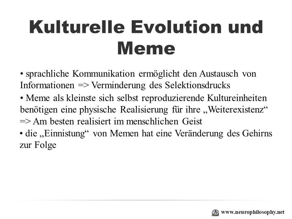Kulturelle Evolution und Meme www.neurophilosophy.net sprachliche Kommunikation ermöglicht den Austausch von Informationen => Verminderung des Selekti