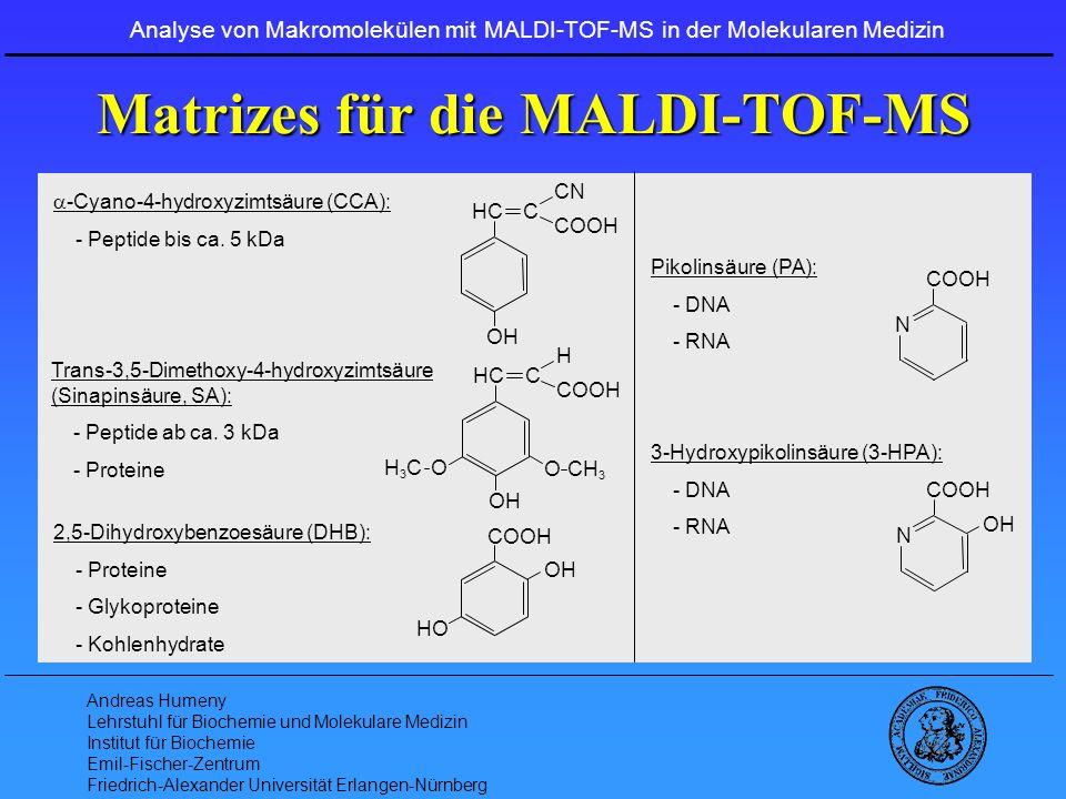 Andreas Humeny Lehrstuhl für Biochemie und Molekulare Medizin Institut für Biochemie Emil-Fischer-Zentrum Friedrich-Alexander Universität Erlangen-Nürnberg - Transcriptomics - MALDI-TOF-MS in der RNA-Analytik Analyse von Makromolekülen mit MALDI-TOF-MS in der Molekularen Medizin