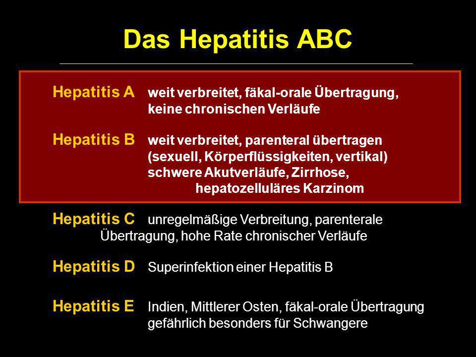 Das Hepatitis ABC Hepatitis A weit verbreitet, fäkal-orale Übertragung, keine chronischen Verläufe Hepatitis B weit verbreitet, parenteral übertragen