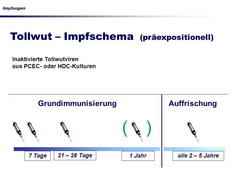 Tollwut – Impfschema (präexpositionell) Impfungen 7 Tage1 Jahralle 2 – 5 Jahre GrundimmunisierungAuffrischung Inaktivierte Tollwutviren aus PCEC- oder