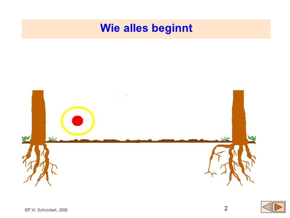 ©P.W. Schwickert, 2006 2 Wie alles beginnt