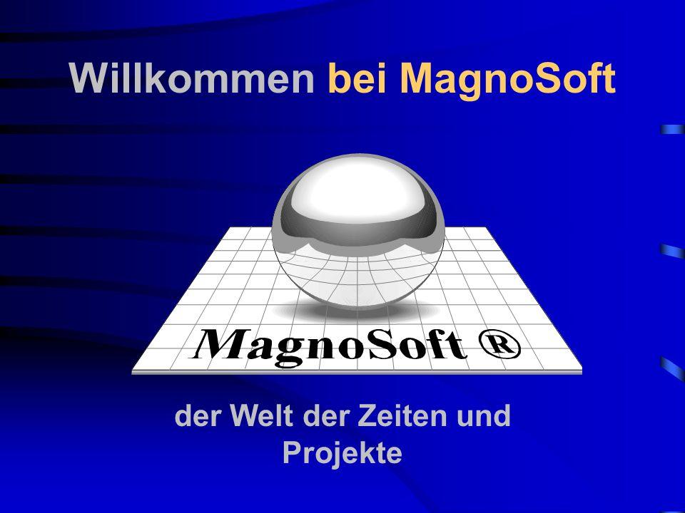Der Programmstart Nach der korrekten Eingabe und Bestätigung des Passwort starten Sie MagnoTime32 Bei der Erstinstallation lautet das Passwort: MagnoSoft