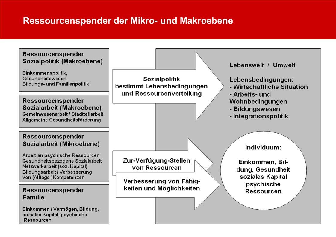 Ressourcenspender der Mikro- und Makroebene