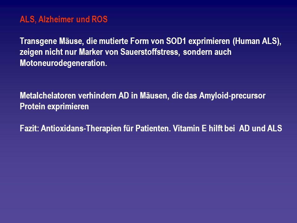 ALS, Alzheimer und ROS Transgene Mäuse, die mutierte Form von SOD1 exprimieren (Human ALS), zeigen nicht nur Marker von Sauerstoffstress, sondern auch
