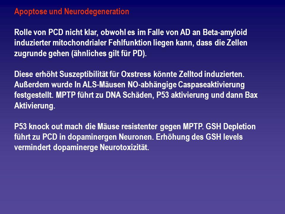 Apoptose und Neurodegeneration Rolle von PCD nicht klar, obwohl es im Falle von AD an Beta-amyloid induzierter mitochondrialer Fehlfunktion liegen kan