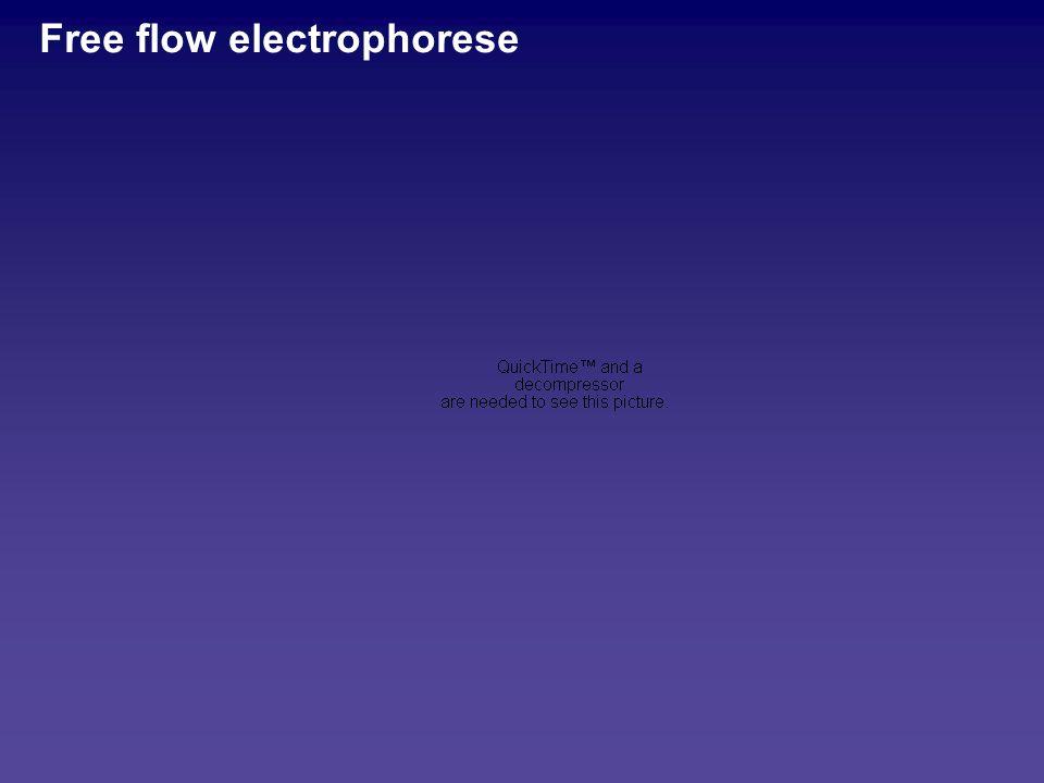 Free flow electrophorese