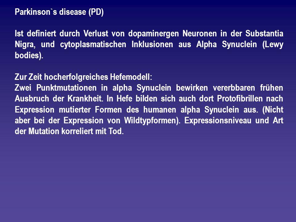 Parkinson`s disease (PD) Ist definiert durch Verlust von dopaminergen Neuronen in der Substantia Nigra, und cytoplasmatischen Inklusionen aus Alpha Sy
