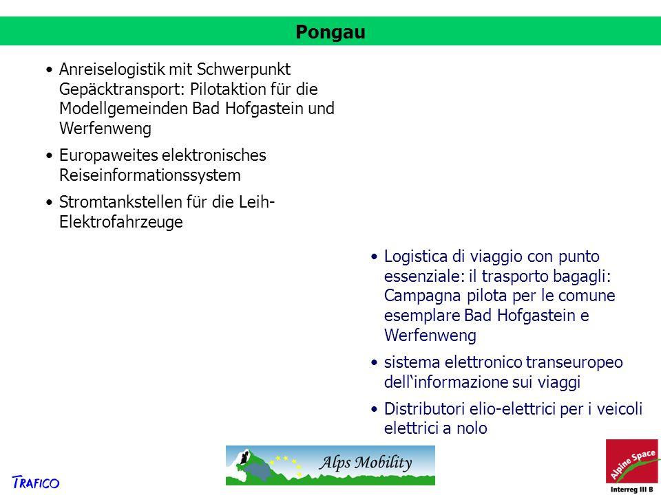 Pongau Anreiselogistik mit Schwerpunkt Gepäcktransport: Pilotaktion für die Modellgemeinden Bad Hofgastein und Werfenweng Europaweites elektronisches