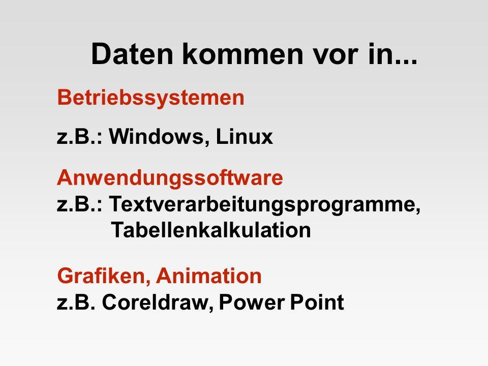 Daten kommen vor in... Betriebssystemen z.B.: Windows, Linux Anwendungssoftware z.B.: Textverarbeitungsprogramme, Tabellenkalkulation Grafiken, Animat