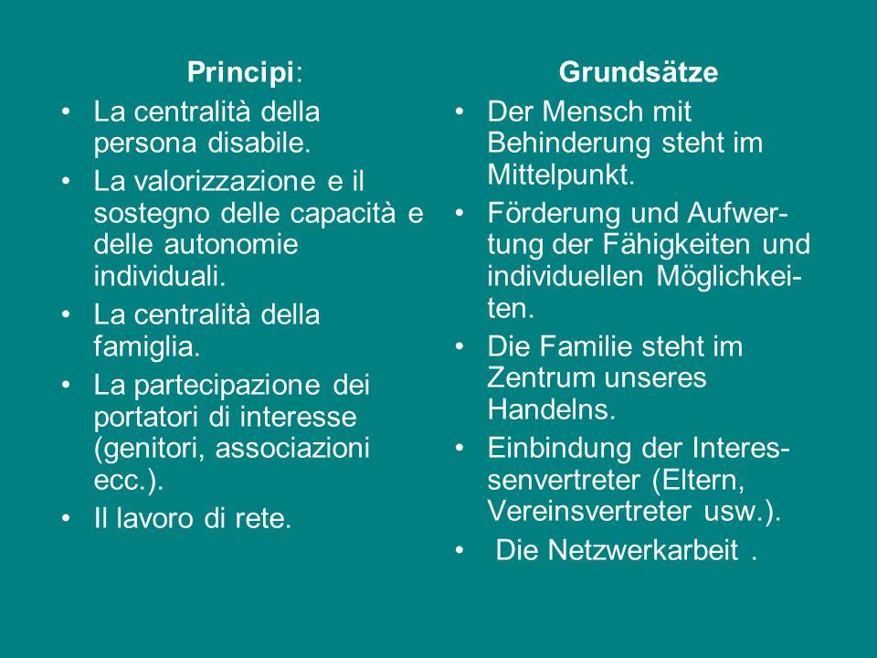 PIANO DI SETTORE PERSONE CON DISABILITÁ Finalità: fornire un quadro generale sulle strutture e i servizi sul territorio della città di Bolzano individ
