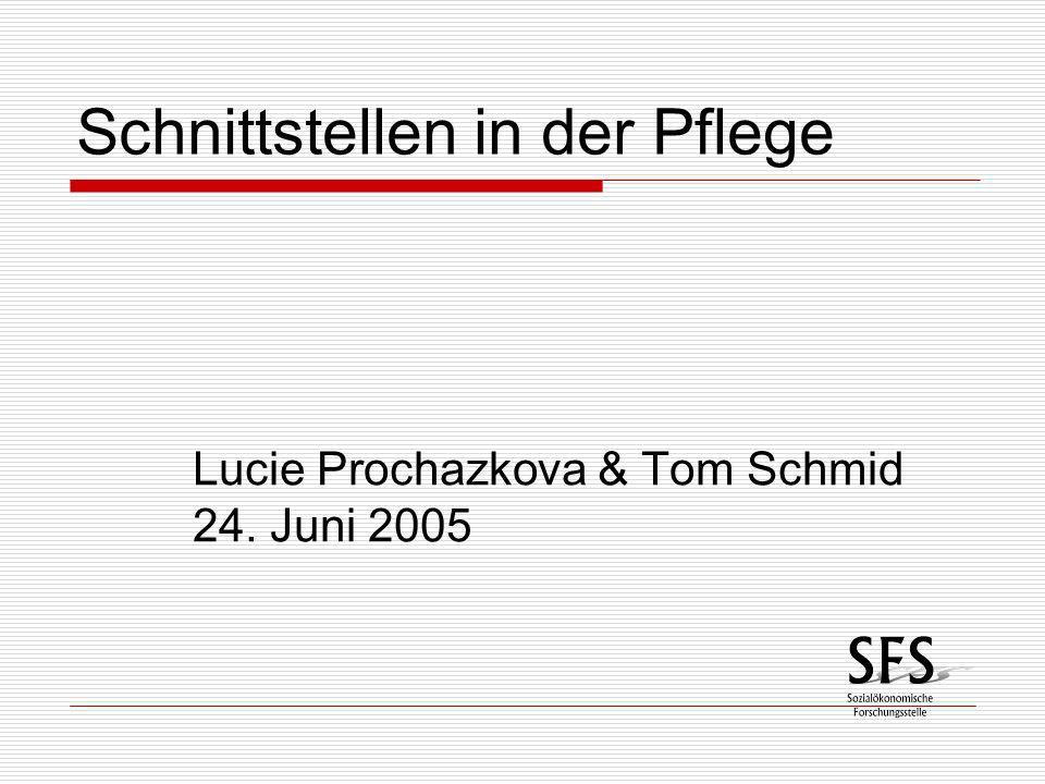 Schnittstellen in der Pflege Lucie Prochazkova & Tom Schmid 24. Juni 2005