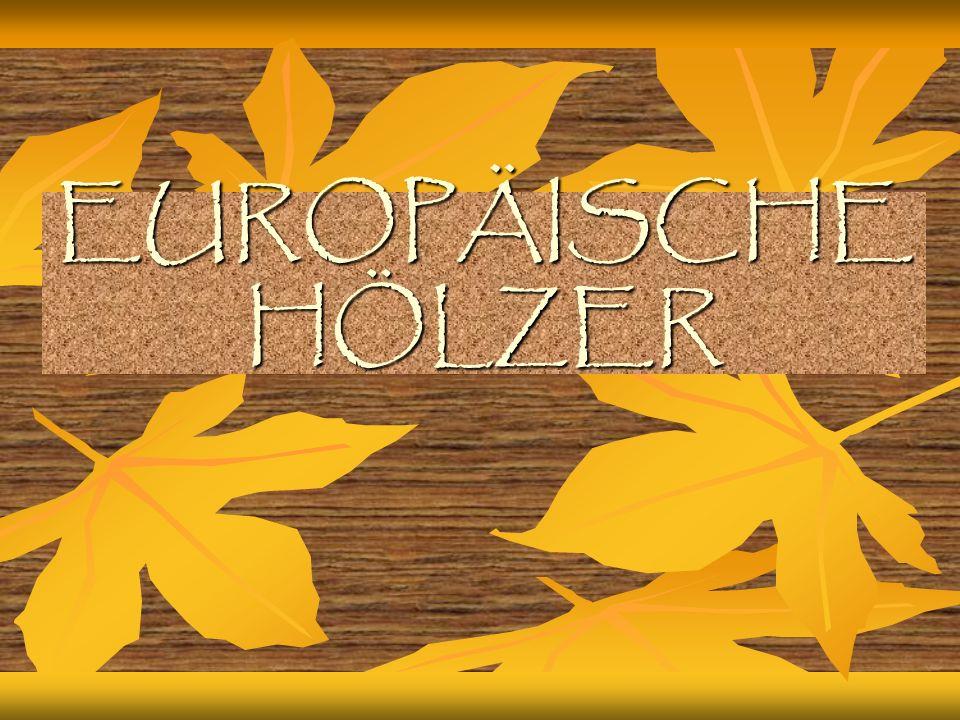 LINDE(=tiglio) Weiß gelblich bis hellbraun Weiß gelblich bis hellbraun Zäh und elastisch, gut zu bearbeiten und zu beizen Zäh und elastisch, gut zu bearbeiten und zu beizen Holzbildhauer- und Drechselarbeiten, Klavierbau Holzbildhauer- und Drechselarbeiten, Klavierbau