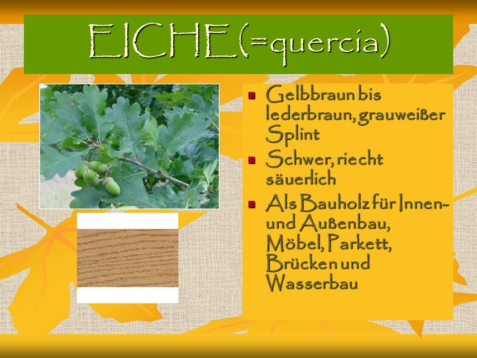 EICHE(=quercia) Gelbbraun bis lederbraun, grauweißer Splint Gelbbraun bis lederbraun, grauweißer Splint Schwer, riecht säuerlich Schwer, riecht säuerl