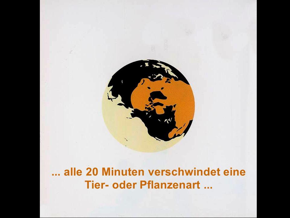 ÖFFENTLICHKEITSBETEILIGUNG www.transportlearning.net... alle 20 Minuten verschwindet eine Tier- oder Pflanzenart...