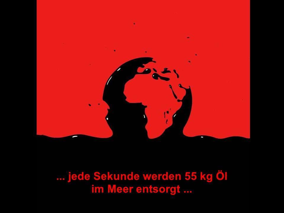 ÖFFENTLICHKEITSBETEILIGUNG www.transportlearning.net... jede Sekunde werden 55 kg Öl im Meer entsorgt...