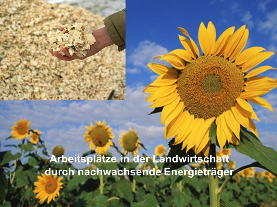 ÖFFENTLICHKEITSBETEILIGUNG www.transportlearning.net Arbeitsplätze in der Landwirtschaft durch nachwachsende Energieträger