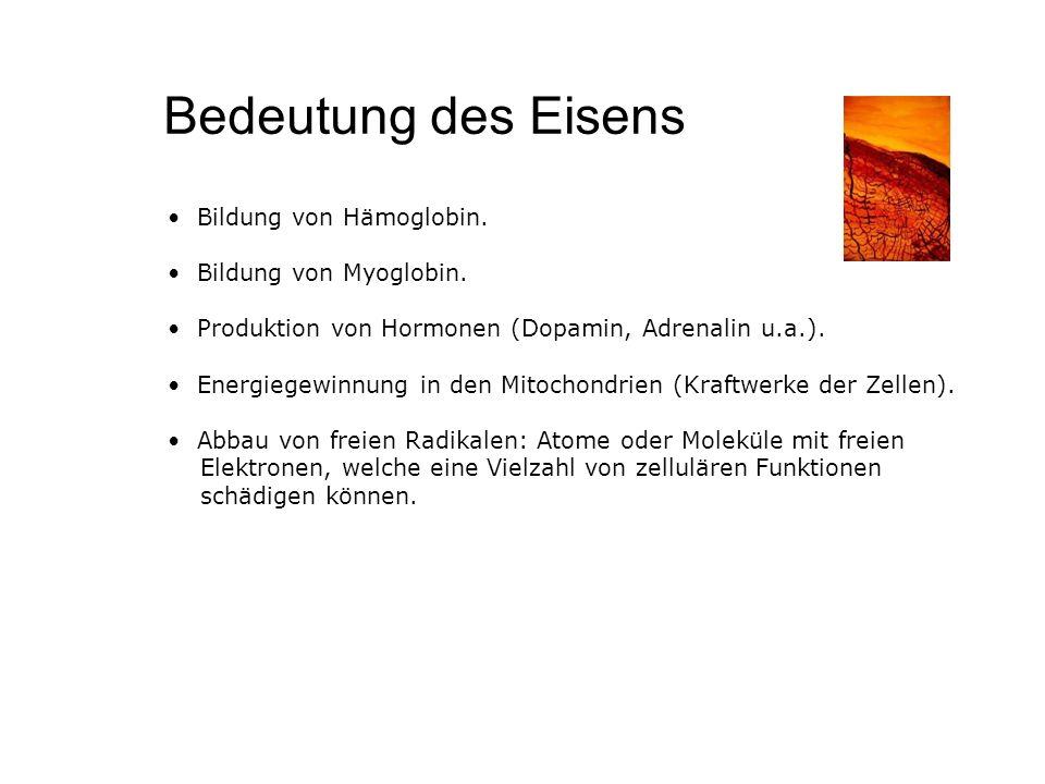 Bedeutung des Eisens Bildung von Hämoglobin. Bildung von Myoglobin. Produktion von Hormonen (Dopamin, Adrenalin u.a.). Energiegewinnung in den Mitocho