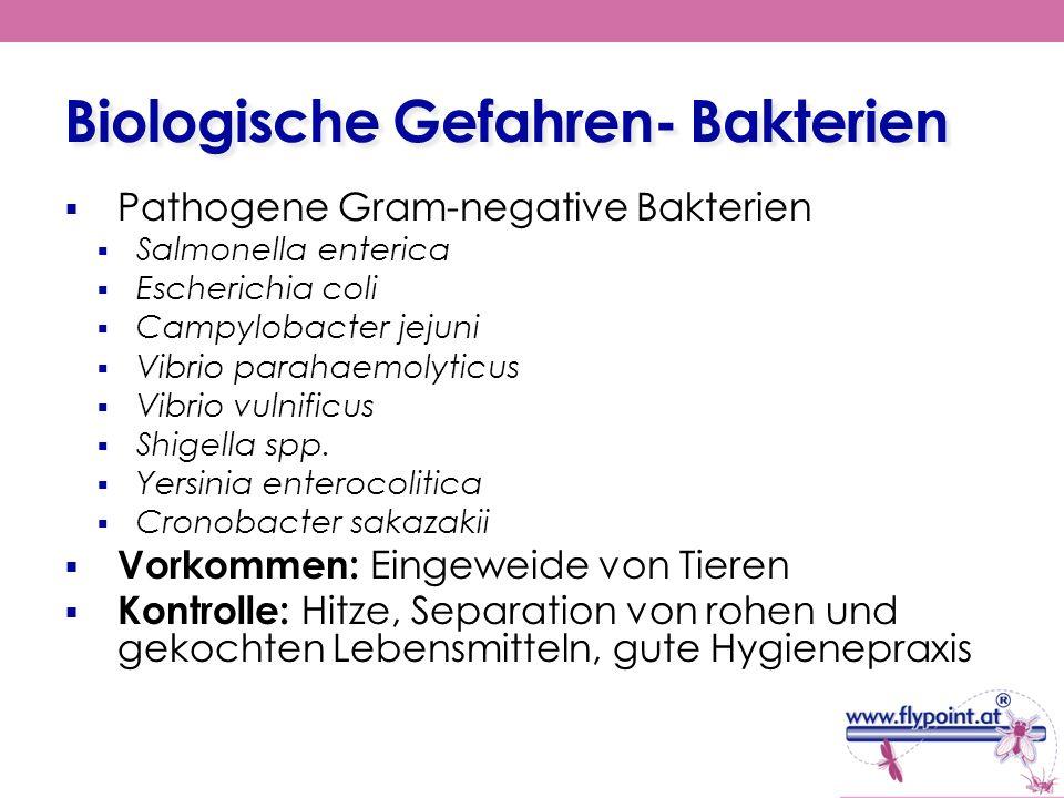 Biologische Gefahren- Bakterien Pathogene Gram-negative Bakterien Salmonella enterica Escherichia coli Campylobacter jejuni Vibrio parahaemolyticus Vi