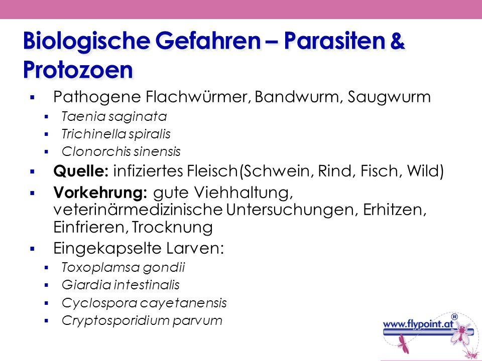 Biologische Gefahren – Parasiten & Protozoen Pathogene Flachwürmer, Bandwurm, Saugwurm Taenia saginata Trichinella spiralis Clonorchis sinensis Quelle