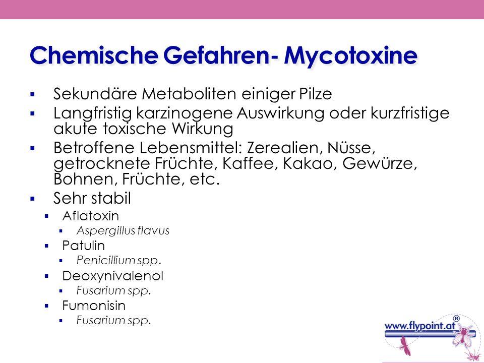 Chemische Gefahren- Mycotoxine Sekundäre Metaboliten einiger Pilze Langfristig karzinogene Auswirkung oder kurzfristige akute toxische Wirkung Betroff