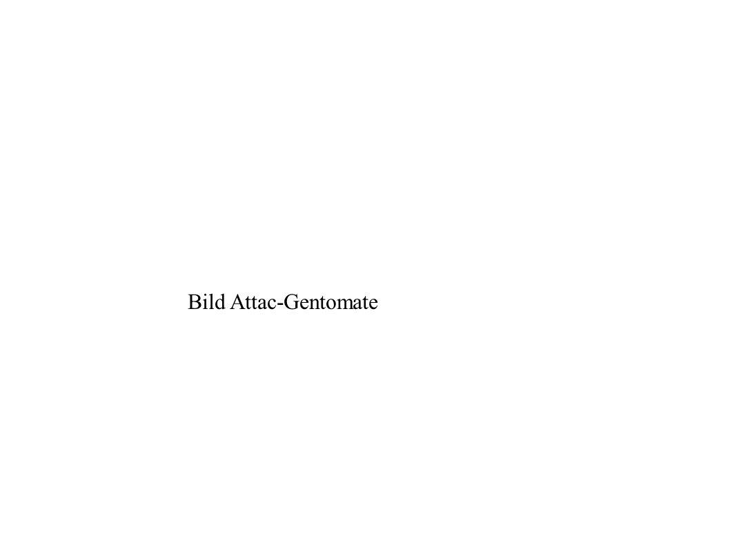 Bild Attac-Gentomate