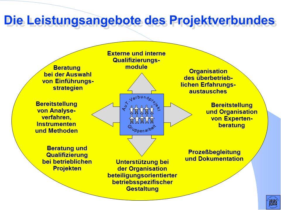 Die Leistungsangebote des Projektverbundes Beratung bei der Auswahl von Einführungs- strategien Bereitstellung von Analyse- verfahren, Instrumenten un